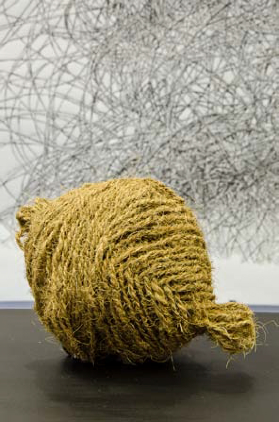 Coir Rope on the Art of Assemblage at Jo'burg Fringe 2011